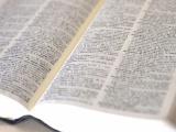 学校で習わない「同形異義語」あなたはいくつわかる?