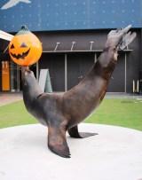水族館「エプソン アクアパーク品川」で19日より、ハロウィンイベント『アクア・ハロウィーン』が開催/その他、ミニパフォーマンスも