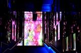 『蜷川実花×すみだ水族館 クラゲ万華鏡トンネル』 大きく投影された蜷川の写真 (C)oricon ME inc.