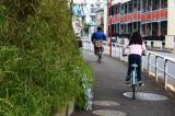 """自転車など""""日常の事故""""にも対応できる! 自動車保険の活用法を紹介"""