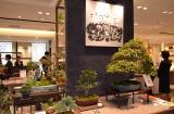 フロアリニューアルを経てリモデルグランドオープンした三越銀座店の7階リビングフロア (C)oricon ME inc.
