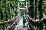 【写真】風情あふれるこんな橋もランクイン!