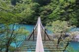 トリップアドバイザーがユーザーの声をもとに実施した「口コミで選ぶ日本の橋ランキング」12位の夢の吊橋(静岡県)