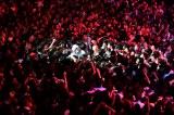 満員の観客にもみくちゃにされながら熱唱するゲスの極み乙女。のボーカル・川谷絵音(写真:橋本塁)