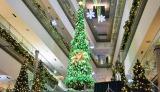 表参道ヒルズ(東京・渋谷区)に登場した、高さ8メートルの巨大ツリー 写真は昼バージョン(C)oricon ME inc.
