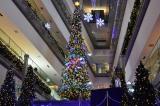 表参道ヒルズ(東京・渋谷区)に登場した、高さ8メートルの巨大ツリー 写真は夜バージョン(C)oricon ME inc.