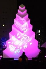 新宿テラスシティ(東京・新宿/渋谷)のクリスマスイルミネーションが11日よりスタート (C)oricon ME inc.