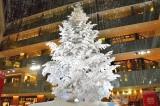JPタワー商業施設「KITTE」がクリスマスイベント『WHITE KITTE』をスタート(19日=東京・千代田区) (C)oricon ME inc.