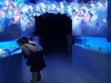 エプソン アクアパーク品川(東京・港区)の「SNOW AQUARIUM BY NAKED」(2015年4月10日まで)フローズンコーラルゲート