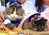 芦ノ牧温泉駅初代ご長寿あっぱれ名誉駅長に就任した「ばす」(右)と名誉駅長に就任した「らぶ」