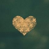 『第8回CDショップ大賞2016』二次ノミネート作品 米津玄師『Bremen』