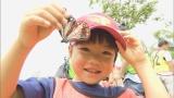 アサギマダラを観察している大分県姫島の子どもたち(C)OBS