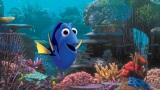『ファインディング・ニモ』の続編『ファインディング・ドリー』(7月16日公開)。声優に木梨憲武、室井滋の続投も決定(C)2016 Disney/Pixar. All Rights Reserved.