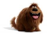 日村勇紀が声優を務めるデューク。ケイティによって保健所から救出されたずんぐりむっくりしたのろまな犬 (C)Universal Studios.