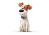設楽統が声優を務めるマックス。飼い主のケイティに甘やかされて育った。 (C)Universal Studios.