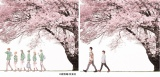 """コブクロが歌う映画『orange-オレンジ-』主題歌「未来」の""""Spring Package""""ジャケット(C)高野苺/双葉社"""