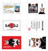 アドニス・スクウェア ネット通販購入特典「なめ猫ステッカー6種セット」