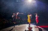 """埼玉・西武プリンスドームで開催された『MOMOIRO CLOVER Z DOME TREK 2016 """"AMARANTHUS/白金の夜明け""""』ファイナル公演1日目の模様"""