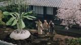 auの三太郎シリーズ『大きなかぶ』篇