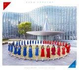 乃木坂46が2ndアルバム『それぞれの椅子』ジャケ写を公開(写真はType-D)