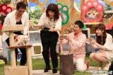 P00002133320『SMAP×SMAPプレゼンツ「やっぱり猫が好きすぎて…」〜芸能人ねこ自慢グランプリ〜』フジテレビ系で5月23日放送