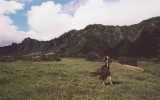 『オトナMUSE』5月号で東京とハワイのデュアルライフを語った梨花(宝島社)