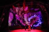 プロジェクションマッピングなどを使い迫力のあるステージが繰り広げられた新ミュージカルショー (C)oricon ME inc.