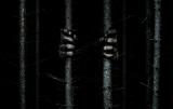 12月1日公開の映画『ザ・ウッズ』。このビジュアルから予測できる「なにか」って何? (C) 2016 Lions Gate Films Inc.  All Rights Reserved.