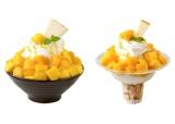 季節限定メニュー『マンゴーココナッツソルビン』(左)とテイクアウト用の『マンゴーココナッツソルビンゴ』