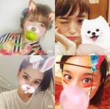 自撮りアプリを利用したオーディションが開催(上段左から時計回りに)益若つばさ、近藤千尋、高橋メアリージュン、MEGBABY