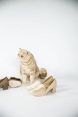 『Square toe fur pumps』(9900円)