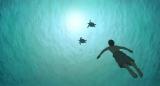 スタジオジブリ最新作『レッドタートル ある島の物語』