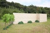 『嵐にしやがれ』で松本潤と知念侑李が「カッコ良い壁の登り方対決」に挑戦 (C)日本テレビ