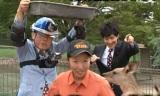 カンガルーにエサやりする猪瀬氏(C)関西テレビ