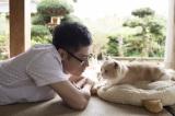 映画『ねこあつめの家』に主演する伊藤淳史 (C)2017 Hit-Point/『映画ねこあつめ』製作委員会