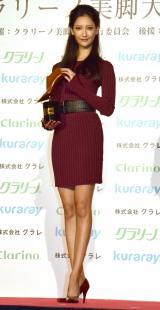 『クラリーノ美脚大賞2016』の20代部門を受賞した菜々緒 (C)ORICON NewS inc.