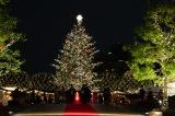 恵比寿ガーデンプレイスのクリスマスイベント『Baccarat ETERNAL LIGHT-歓びのかたち-』が5日より開催 (C)oricon ME inc.