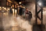 『ファンタスティック・ビーストと魔法使いの旅』 (C) 2016 Warner Bros. Ent.  All Rights Reserved. Harry Potter and Fantastic Beasts Publishing Rights (C)JKR.