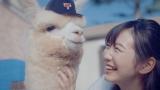 新WEBムービー「パカまじめ。」篇に出演するアルパカの大地くんと岡本夏美