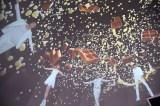 ドームの中のスペシャル映像=『江崎グリコ「セブンティーンアイス」キャンペーン』記者発表会 (C)ORICON NewS inc.
