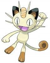 ニャース(Meowth)