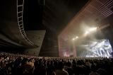 『Goose house Live Tour 2017〜はじまり、はじまりツアー〜』ファイナル公演より Photo by 鳥居洋介