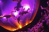 500万人を熱狂させてきた「フエルサ ブルータ」公演