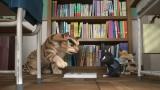 『ルドルフとイッパイアッテナ』場面写真 (C)2016「ルドルフとイッパイアッテナ」製作委員会