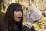 4月23日スタート、フジテレビ系ドラマ『櫻子さんの足下には死体が埋まっている』劇中カット初公開