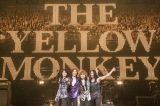 THE YELLOW MONKEYが東京ドーム2days決定