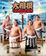 フジテレビお台場移転20周年記念 大相撲夏巡業『大相撲ODAIBA場所2017』開催決定。8月23日〜24日開催