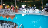 「CHANDON PASSION presents TROPICAL DISCO」が開催