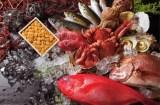 意外と知らない「魚介類」の英語名を10選紹介する