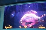 映画で描かれた海底の世界を体験(C)oricon ME inc.